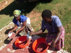 progetto_sviluppo_RDCongo