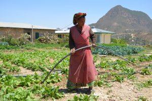 etiopia_progetto_agricolo